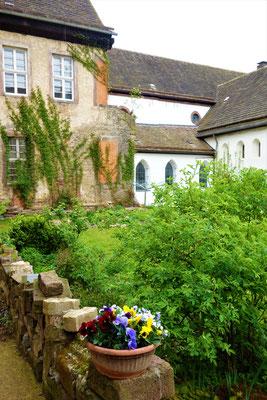 Der Klostergarten, eine Wand zeigt den Zustand der Fassaden bei Übernahme des Klosters.  Foto: Jennifer Peppler