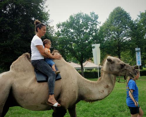 Eine Runde auf dem Rücken des Kamels durch den Garten des Klosters. Foto: Jennifer Peppler