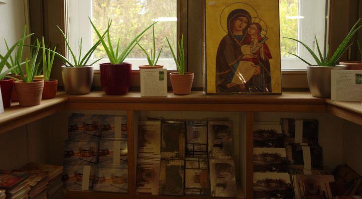Ikonen, Karten und Aloe veras, altägyptische Heilpflanzen. Foto: Jennifer Peppler