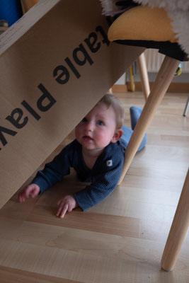 05.04.21 – er robbt grad zielsicher dorthin, wo er nicht sollte, heute ist er erstmals auch unter dem Sofa gelandet