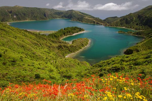 São Miguel - Lagoa do Fogo