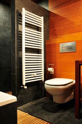 Bathroom with wood paneling