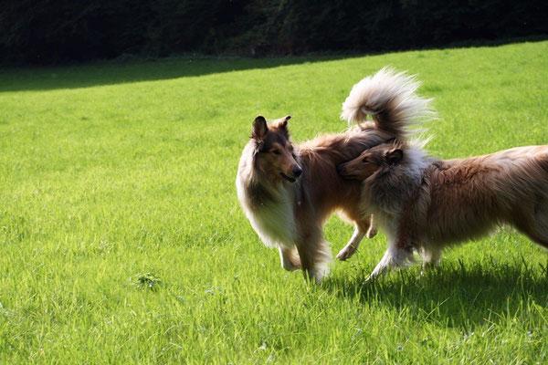Lennox & Bailey