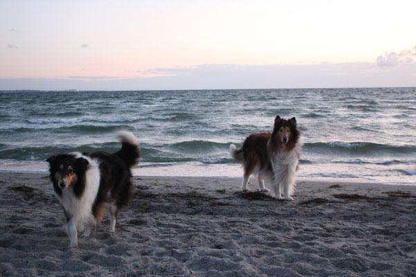 Sheila und Carlo am Strand