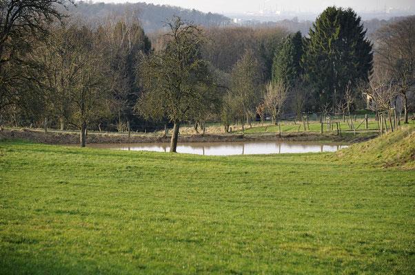 Neuerdings haben wir einen See auf unserer Runde ;) Ein Überbleibsel der langen, üppigen Regenfälle