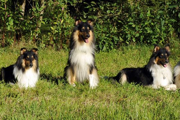 Milos mit Djuli und Mika