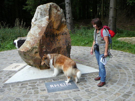 Am Dreiflußstein: Meggy hat auf Anhieb den Richtigen ausgewählt! Wo wir doch aus dem Rheinland kommen!