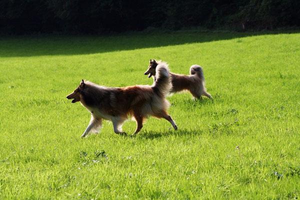 Bjarki vorne mit Lennox
