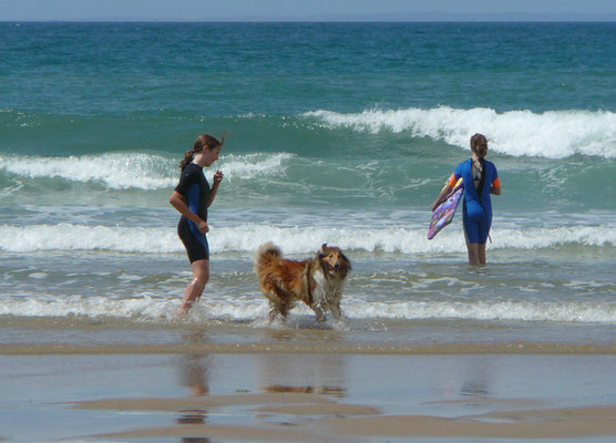 Meggy will mit zum Wellenreiten