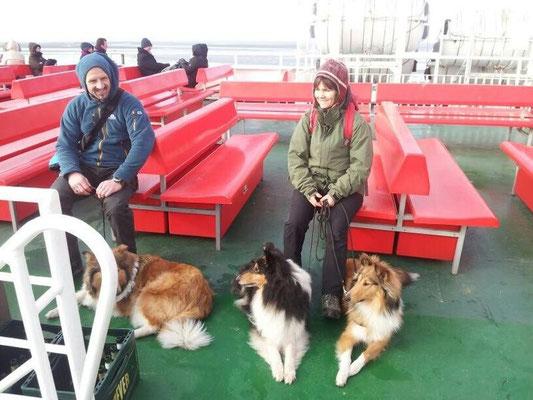 Warm verpackt morgens auf der Fähre, alle Hunde supercool!