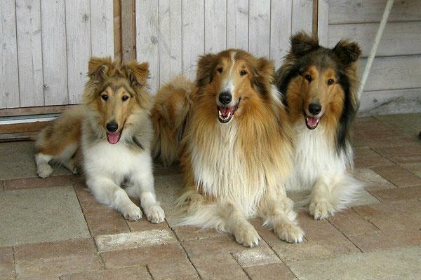 Cosy mit ihren großen Freundinnen Whity und Amy