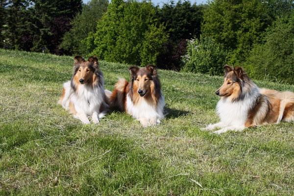 Meggy mit ihren kleinen Mädels ;)