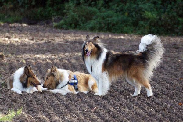 Lotte, Connor, Timmy