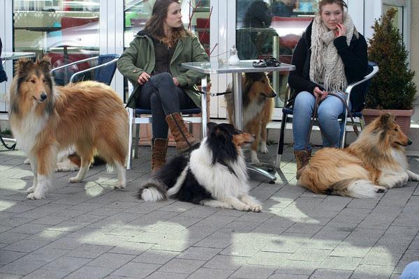 Langnasenbelagerung des Eiscafés :-)