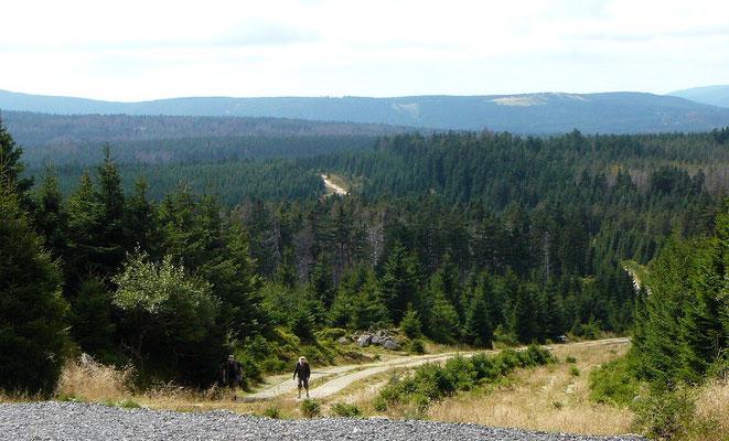 Blick von halber Höhe über den Harz