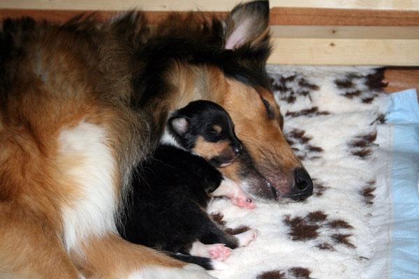 Djuli kuschelt mit Mama <3