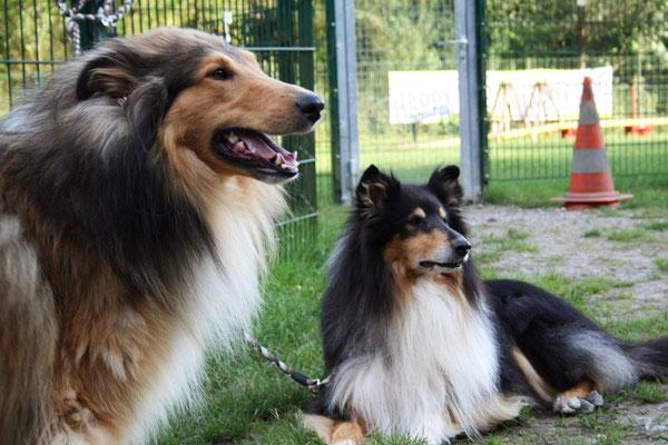 Bjarki & Kumpel Balou