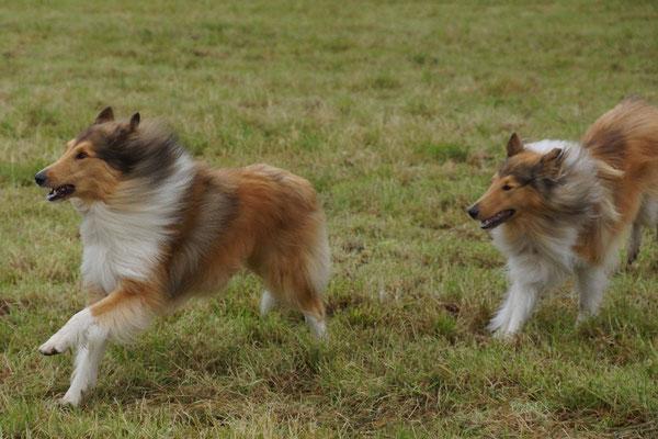 Lennox mit seinem kleinen Bruder Connor