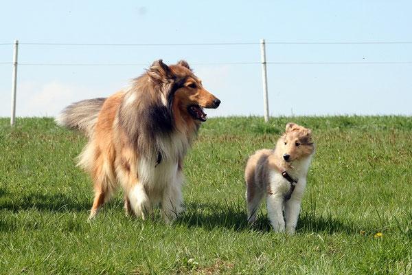 Zwiegespräch großer Bruder - kleine Schwester ;)