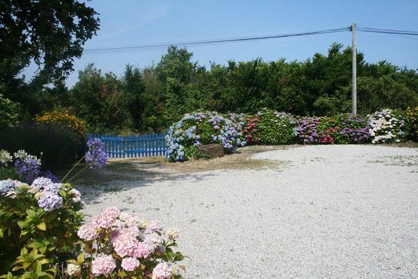 Mit einem unglaublich tollen Garten