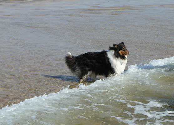 Klara ist das nicht so ganz geheuer mit den Wellen