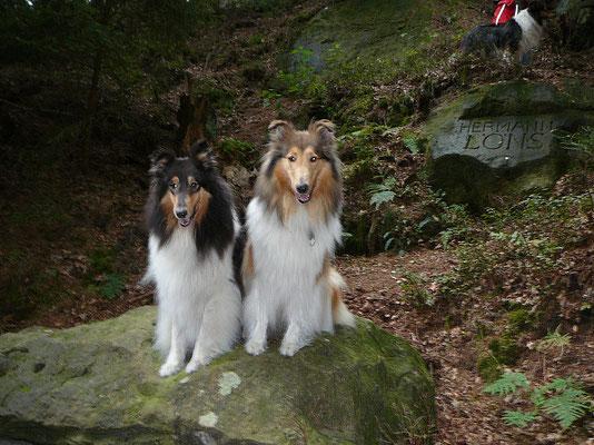 Klara und Meggy wollen auch auf den Stein