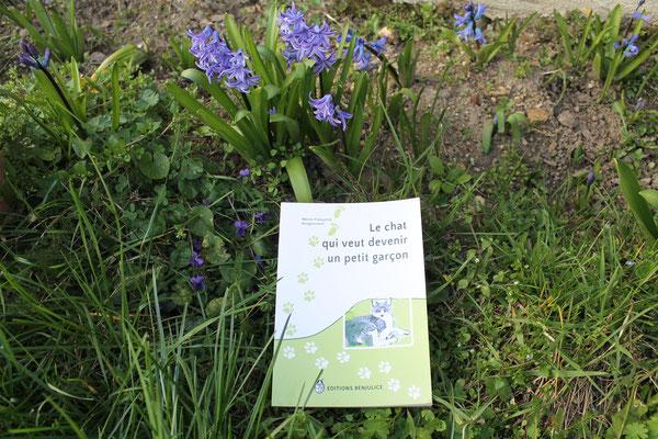 Le livre Le chat qui veut devenir un petit garçon paru écrit par Marie-Françoise Bongiovanni et paru aux éditions Benjulice aux pieds des crocus et des violettes
