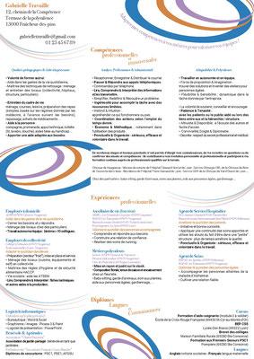 Cv bilan de compétences - 2017_ Mots clefs : femme, polyvalente, altruiste, parme, bleu et orange _ Technique :Illustrator