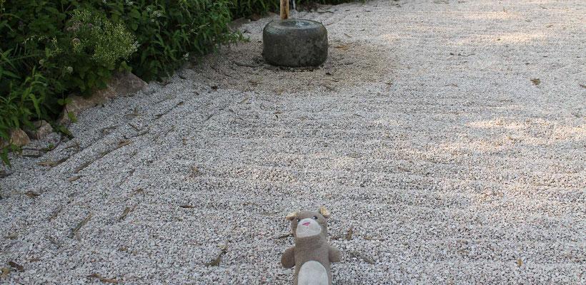 Moka la loutre dans le jardin zen des bonzes aux Jardins Aquatiques l'été 2017 avec l'illustratrice Cloé Perrotin