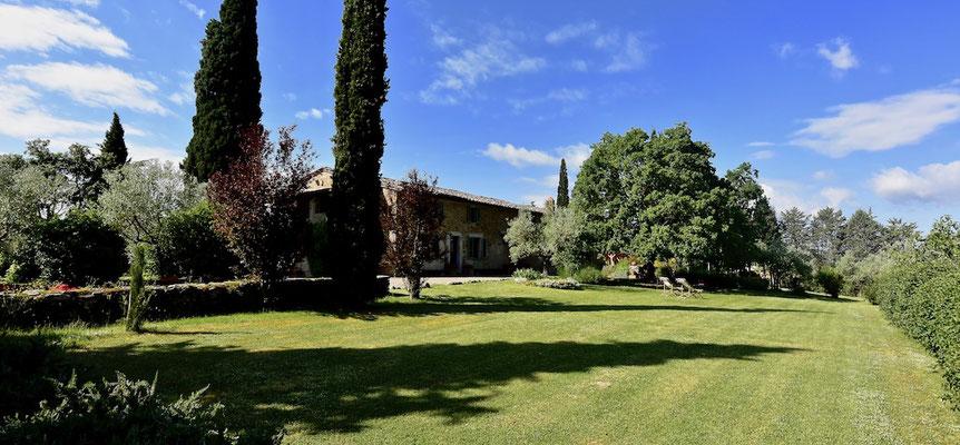 Sycamore tree, large lawn,  villa, Casafredda, Arezzo, Toscana, Tuscany, Agriturismo, casa vacanza