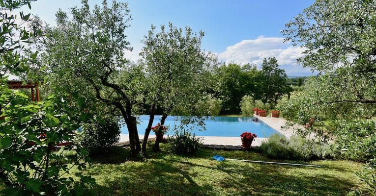 swimming pool, villa, Casafredda, Arezzo, Toscana, Tuscany, Agriturismo, casa vacanza