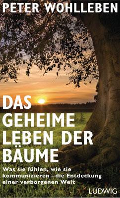 Bestseller: Das geheime Leben der Bäume: Was sie fühlen, wie sie kommunizieren - die Entdeckung einer verborgenen Welt