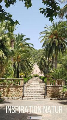 Inspiration Natur Mallorca