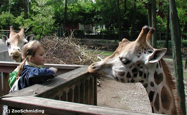 Zoobesuch für die Kleinen