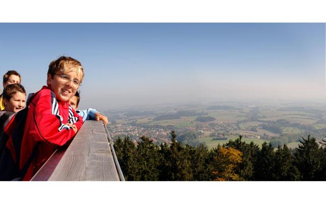 Aussichtsplattform im Sauwald