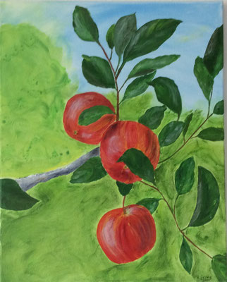 Äpfel am Zweig, 40x50 cm