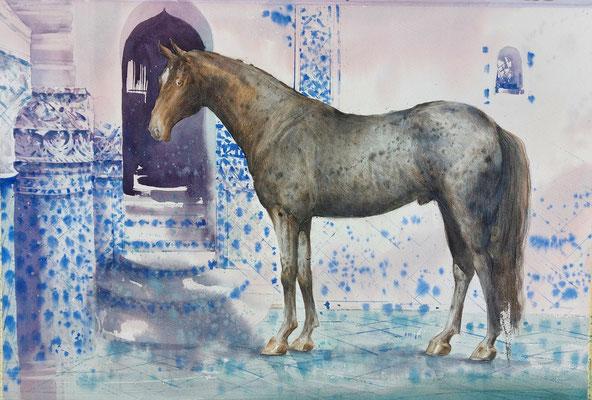 The silver horse, watercolor, 53x35cm