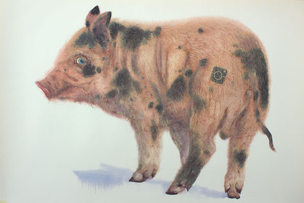 Carl, watercolor, 38x53cm