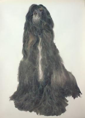 Salvador, watercolor, 85x60cm