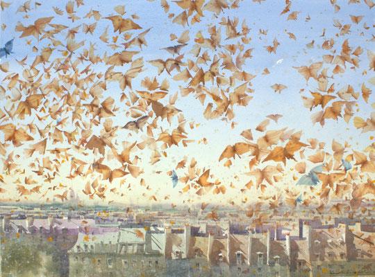 300 butterflies above Paris, 73x53cm