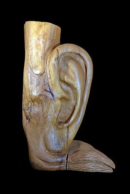 2011 Das Ohr, Skulptur aus Holz / sculpture, wood