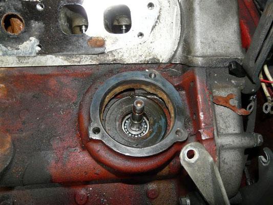 Pumpenwelle ins Motorgehäuse einsetzen.