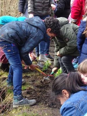 Die Kinder durften bestimmen, wo ihre Pflanze stehen sollte.