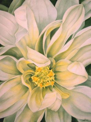 Blütenwesen VII, 80 x 100 cm, Öl/Leinwand
