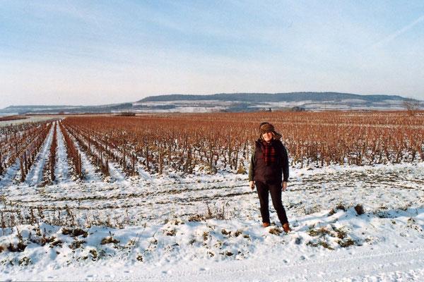 Anne Bavard-Brooks, Les Equinces in winter