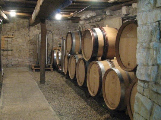 "the juice now in the barrels -- our Burgundy white ""La Combe"" in the foreground, our Puligny village ""Corvée des Vignes"" in the back"