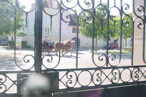 Place de Johannisberg à Puligny en été