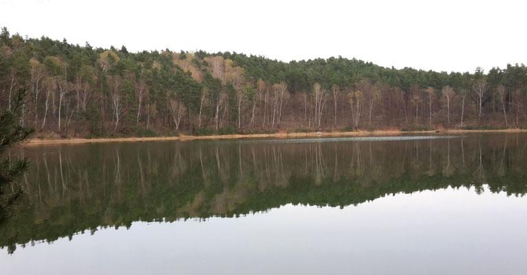 Frauchen liebt diesen See - & wir Vierbeiner auch!!!