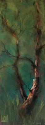 Kleine Birke 1, 12 x 32 cm, Pastell