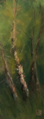 Kleine Birke 2, 12 x 32 cm, Pastell